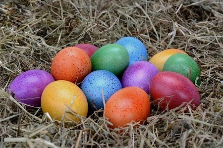 How Many Different Color Chicken Eggs Are There
