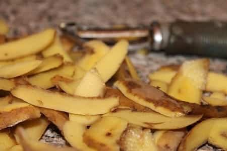 Is It Ok to Feed Your Chickens Potato Peels
