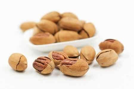 Are Pecans Healthy for Chickens