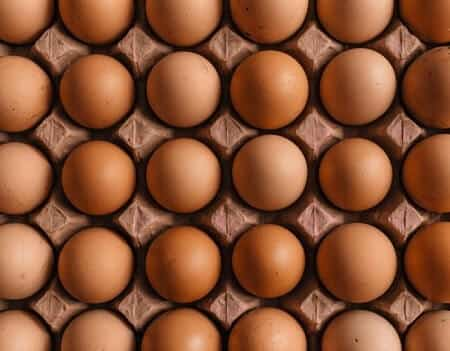 Red Star Chicken Egg Color Size and Production