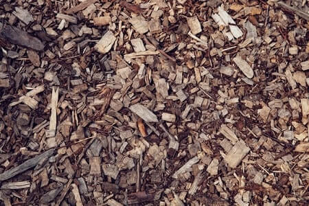 How To Keep Your Chicken Run Wood Chips Clean