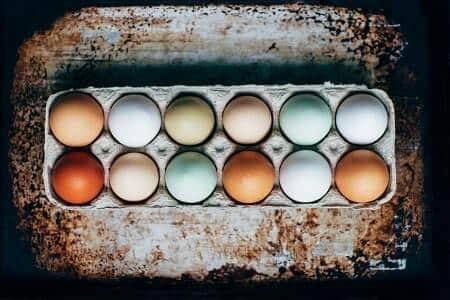 What Color Eggs Do Araucanas and Ameraucanas Lay