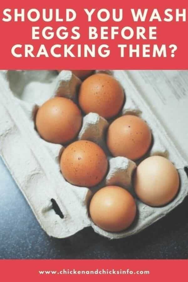Should You Wash Eggs Before Cracking Them