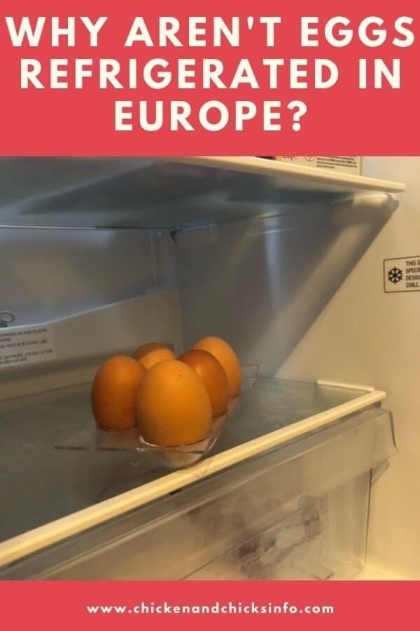 Why Aren't Eggs Refrigerated in Europe